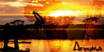 Blog index page thumb afrika