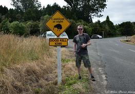 Index blog thumb trouson kiwi   kauri park