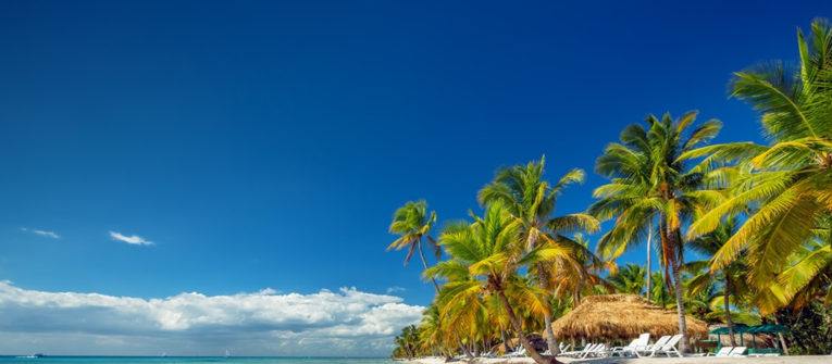 Index big wide dominikanska republika z viedne od 450euro