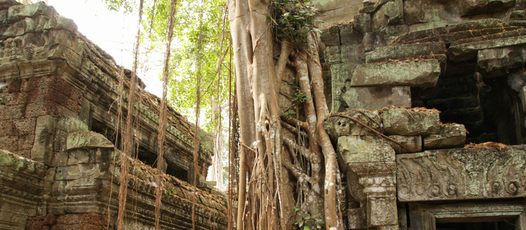 Index big wide ta prohm   %c4%8das%c5%a5 z komplexu angkor temple