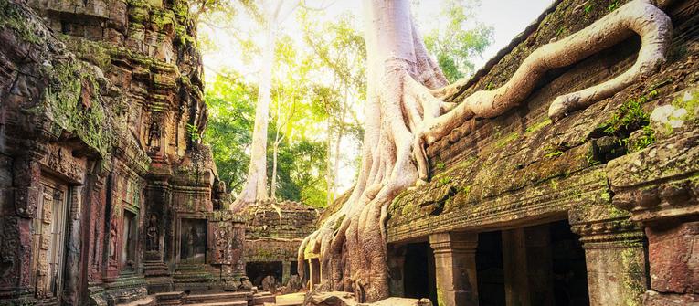 Index big wide kambodza 1