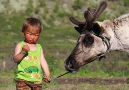 Index blog thumb mongolsko na konoch