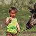 Top list mongolsko na konoch