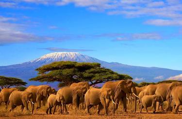 Blog thumb wide tanzania kilimanjaro 1600px