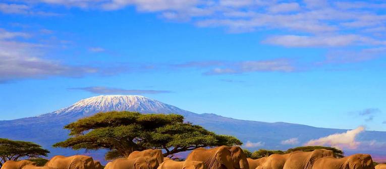 Index big wide tanzania kilimanjaro 1600px