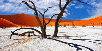 Blog index page thumb afrika namibia pust 2200