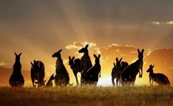 Destination index australia brisbane 549e