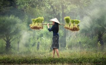 Destination index vietnam 1900px