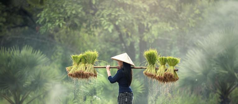 Index big wide vietnam 1900px