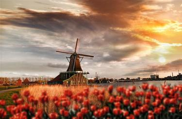 Blog thumb wide holandsko 1