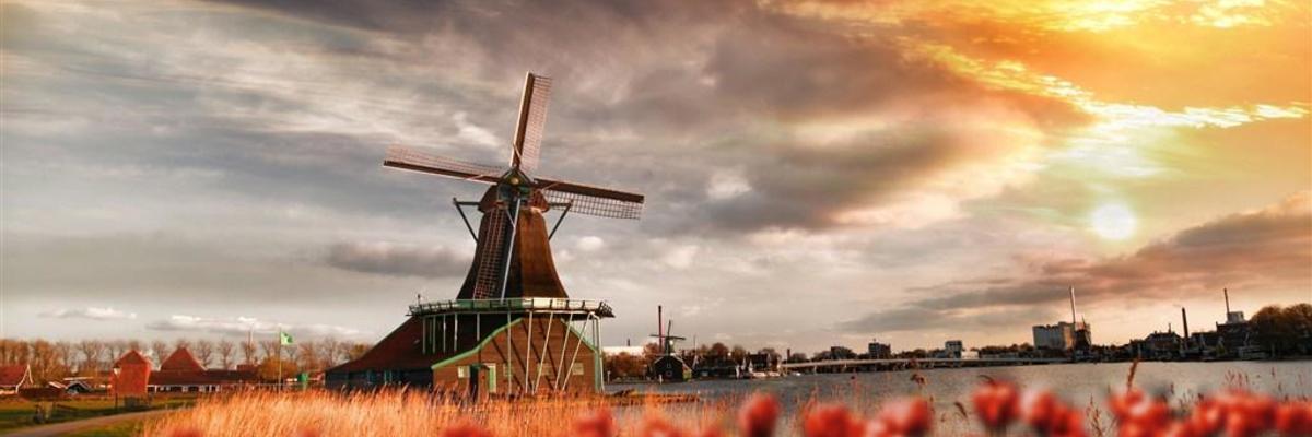 Show big holandsko 1