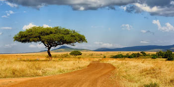 Blog index page thumb tanzania 1500px