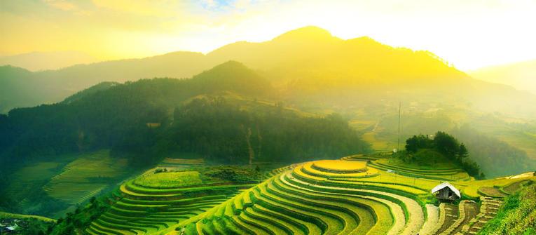 Index big wide vietnam 2