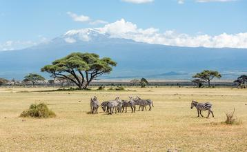 Destination index kilimanjaro 2