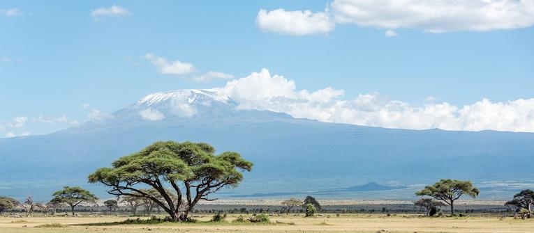 Index big wide kilimanjaro 2