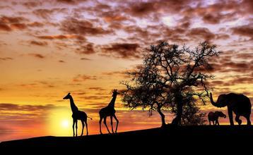 Destination index afrika 1600px