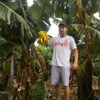 Banánova farma.