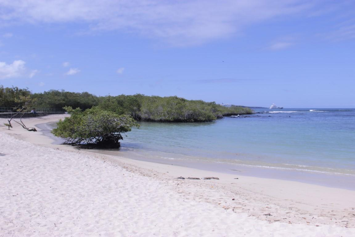 German beach - Puerto Ayora - Galapágy