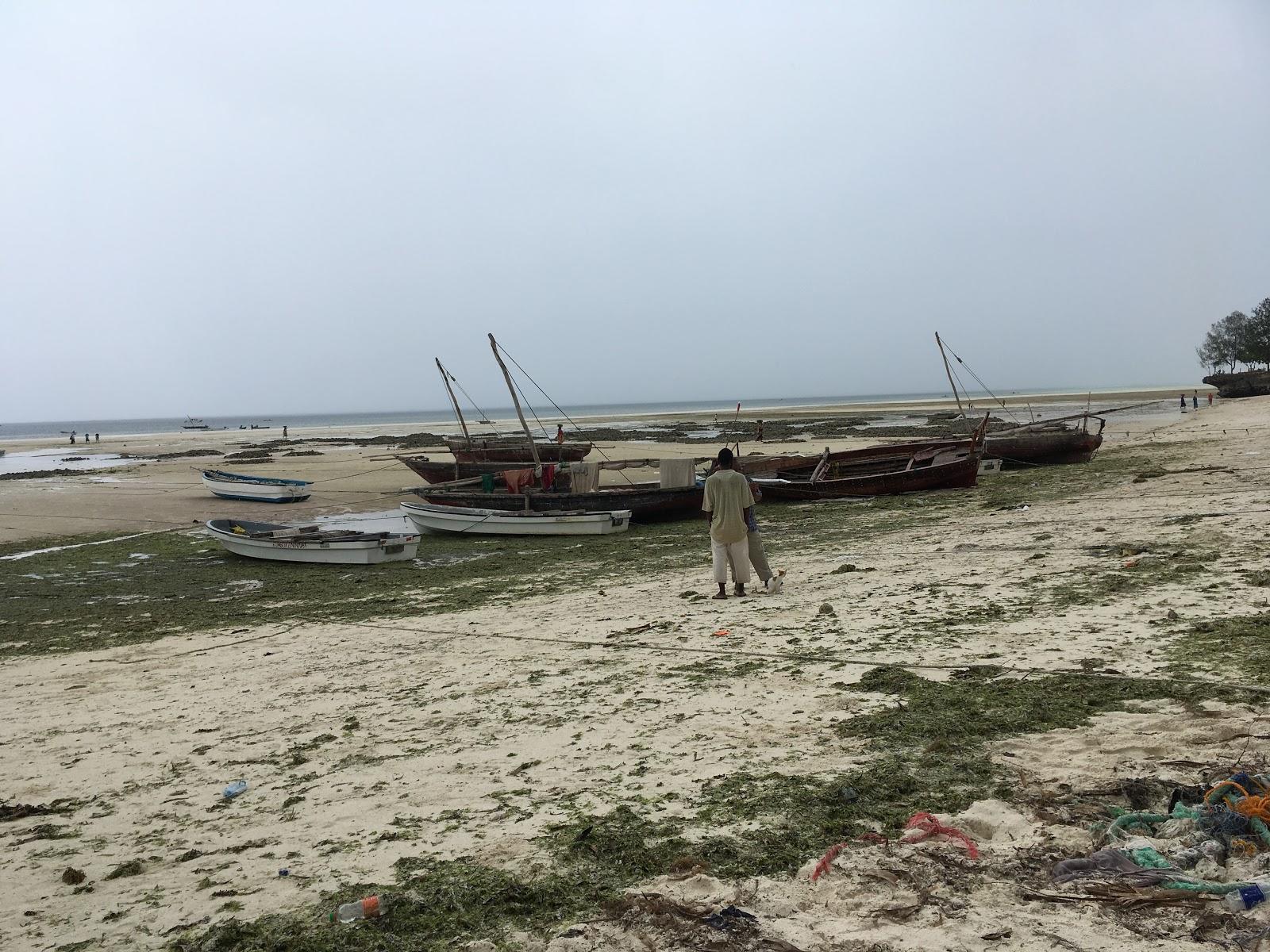 Južné pobrežie Zanzibaru v čase odlivu