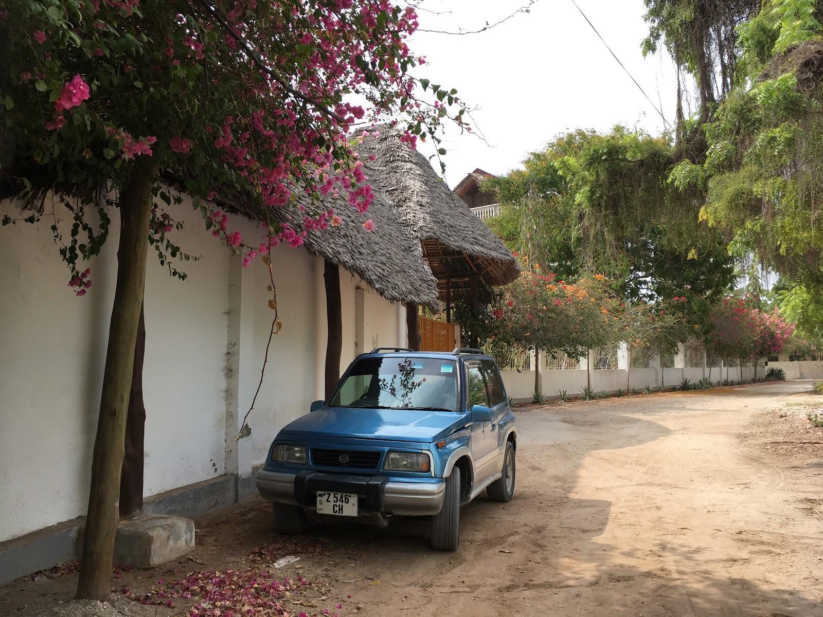 Naše požičané auto, Zanzibar