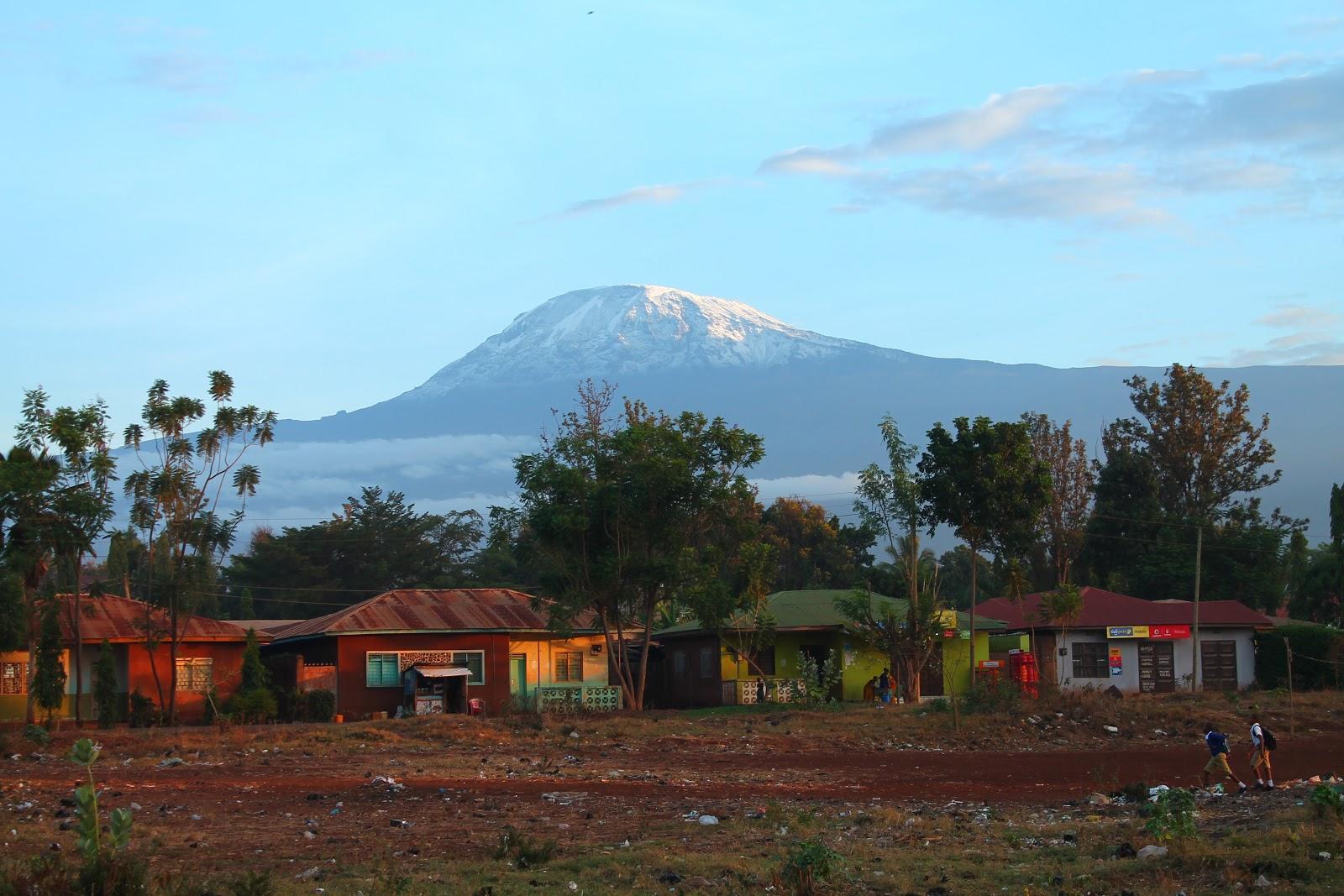Ranné Kilimanjaro, Moshi
