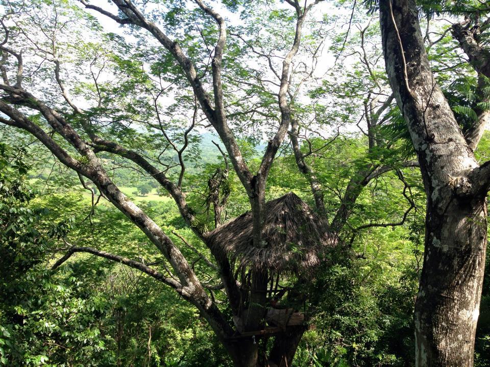 Slamené domčeky v korunách stromov a na nich nič len hamaka a krásne výhľady na panenskú prírodu.