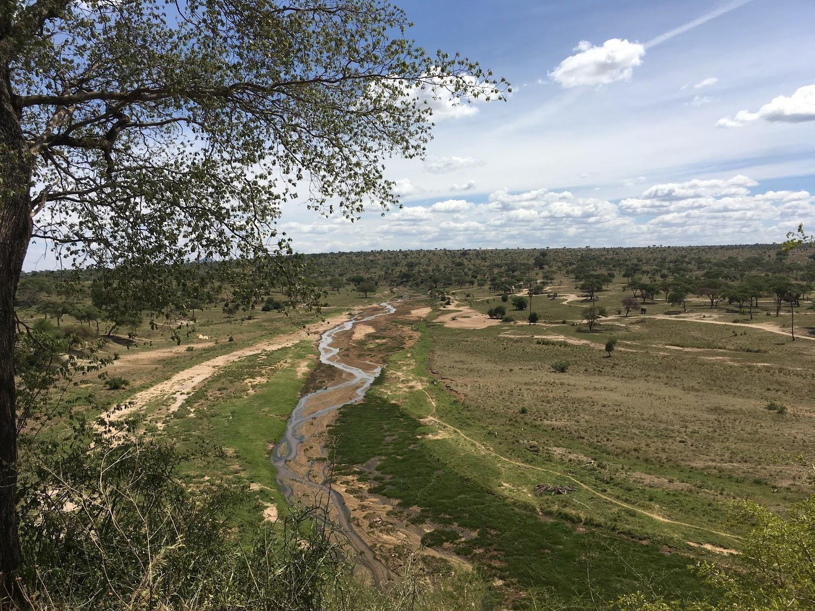 Výhľad na takmer vyschnutú rieku, národný park Tarangire